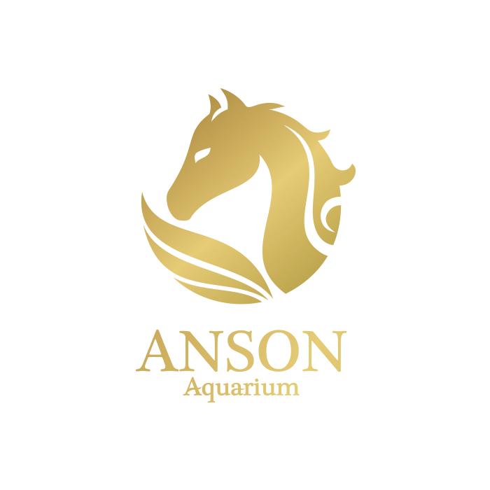 de owl, logo design, Anson Aquarium