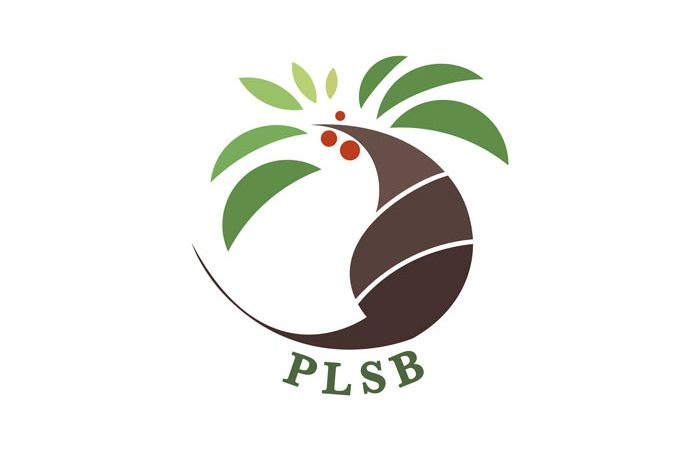 de owl, logo design, PLSB